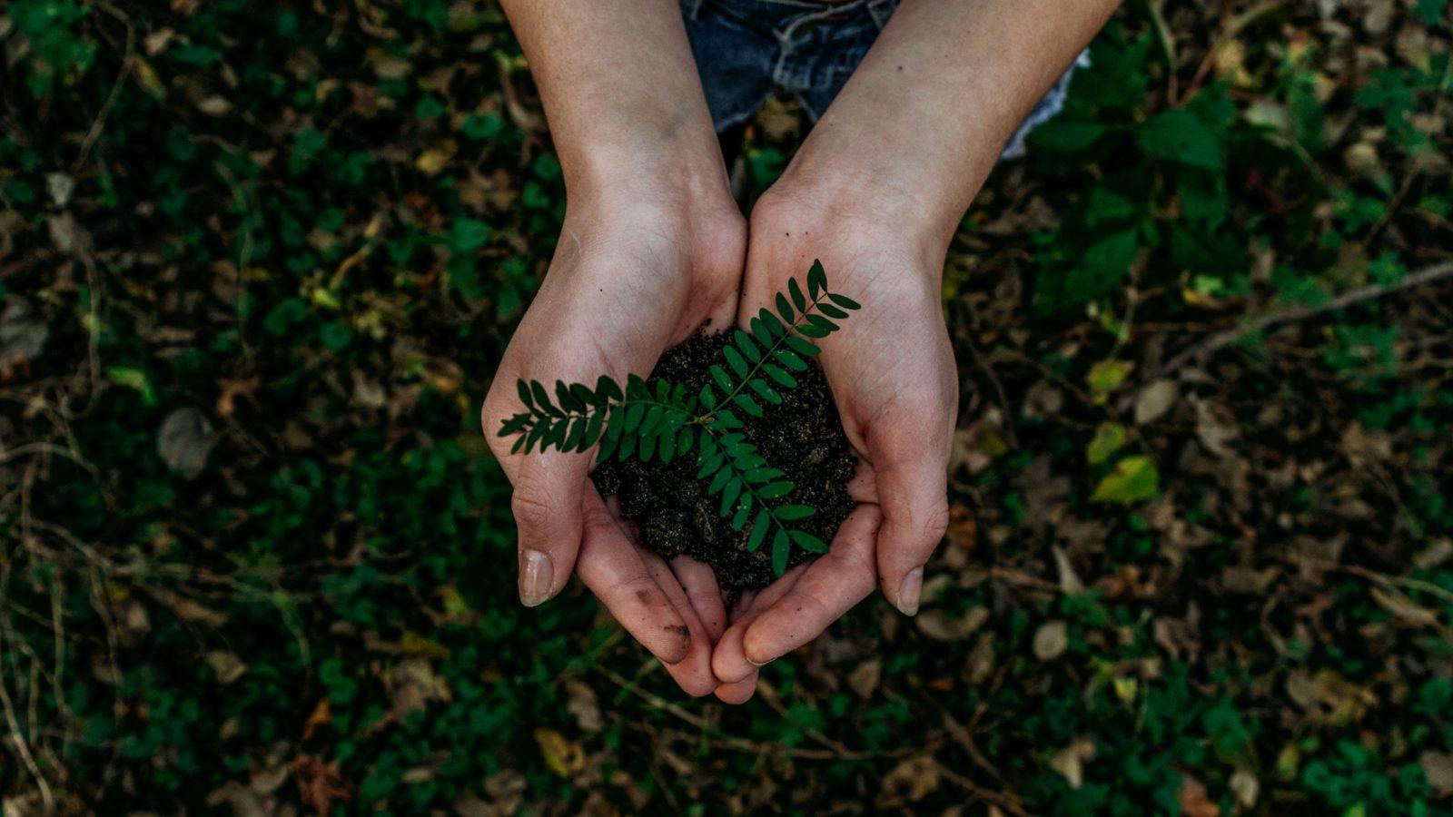 Pri udržateľnom rozvoji majú banky nezastupiteľnú úlohu. K jeho podpore sa zaviazali v spoločnom memorande